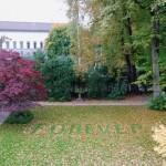 Forever, 2008, foglie su erba, 200x100 cm